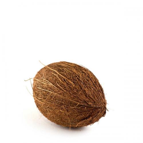 Bio Kokosnuss frisch WAD Ghana
