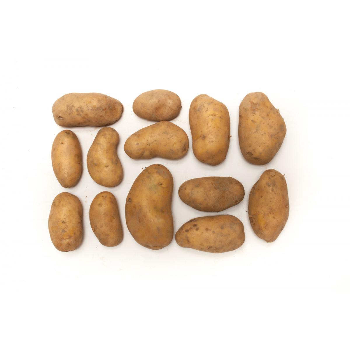 Lageraktion Bio-Kartoffeln festk. ungewaschen