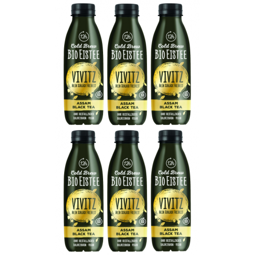 AKTION Bio-Eistee Cold Brew 5dl Sixpack
