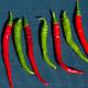 Peperoncini, Cayenne