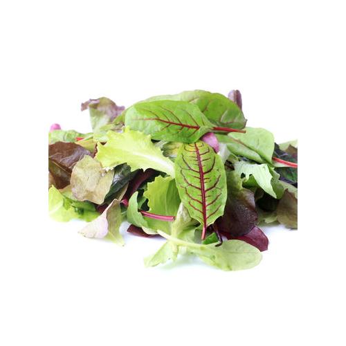 Schnittsalat, Mesclun Zollinger