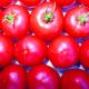 Tomaten, Berner Rosen