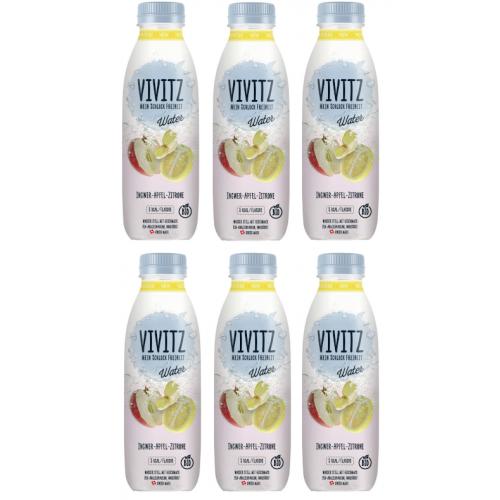 AKTION vivitz Water Inger-Zitrone, 5dl Sixpack