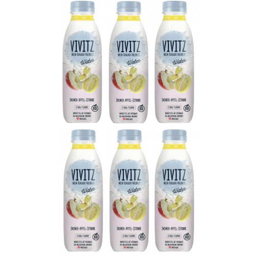 AKTION vivitz Water Ingwer-Zitrone, 5dl Sixpack
