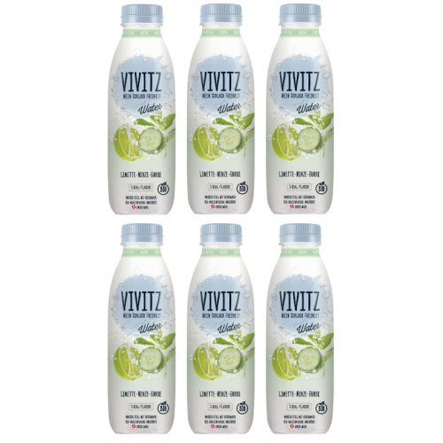 AKTION Vivitz Water Limette Gurke Sixpack