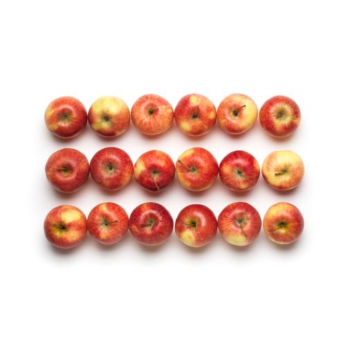 Schweizer Bio Äpfel 2kg