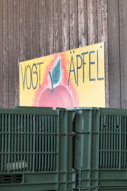 Bio-Apfelernte in Remigen